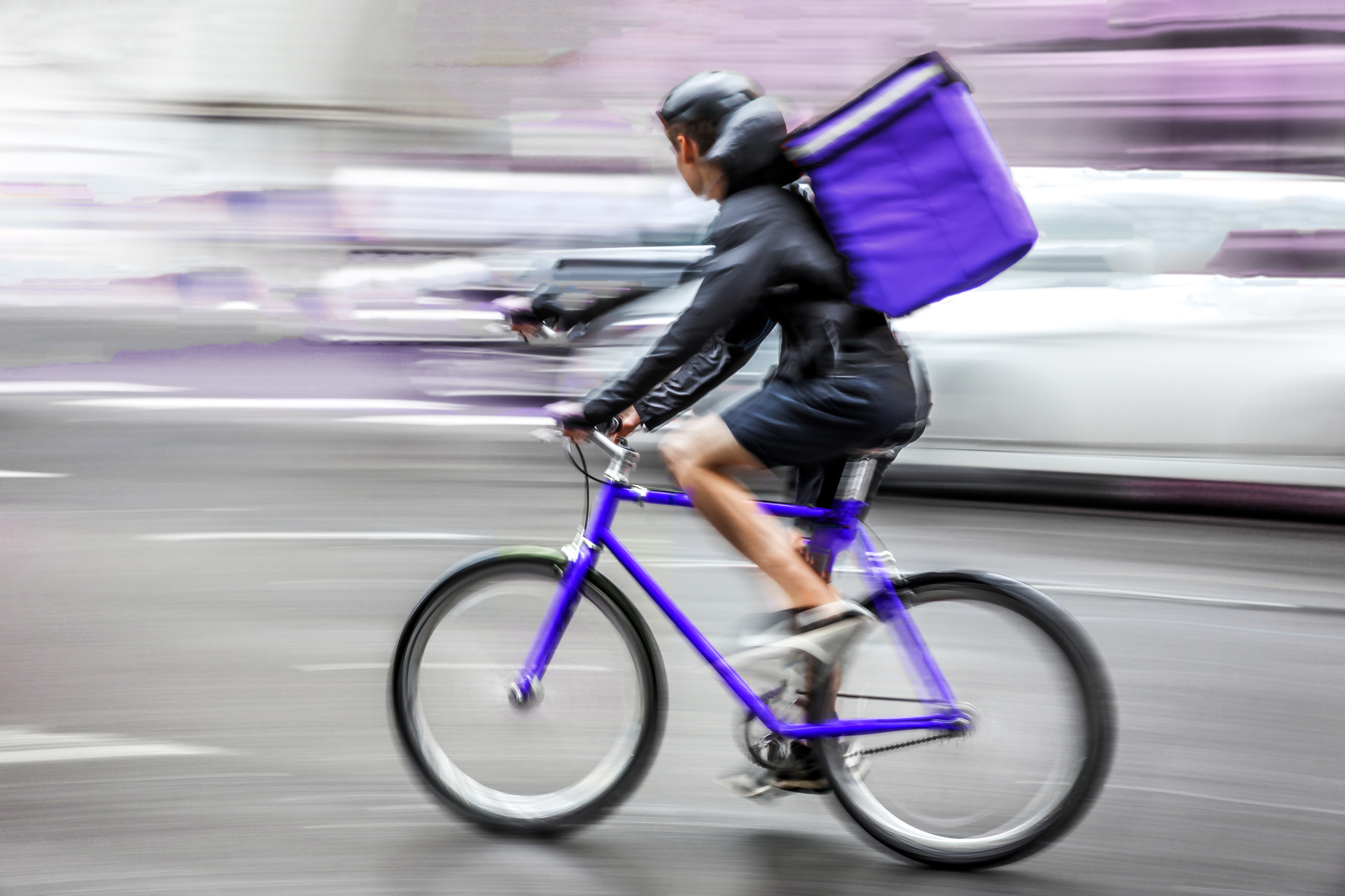 Food Delivery Carrier